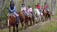Niagara Beach Horseback Ride