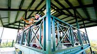 Aerial Tram Tour in Gamboa