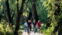 Green Warsaw Bike Tour