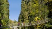 Visita a pie Canyon Sainte-Anne