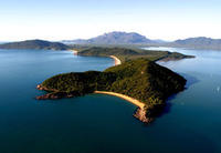 Ultimate Great Barrier Reef and Rainforest 1-hour Helicopter Tour