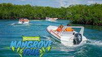 Mangrove Speed Boat Tour