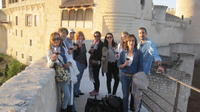 Wine Experience with Castles, Medieval Cities or Cathedrals Tour from Madrid