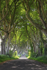 2-Day 'Game of Thrones' Tour from Dublin Including Belfast Sightseeing and Giant's Causeway