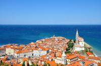 Lipica and Slovenian Coast Tour from Ljubljana