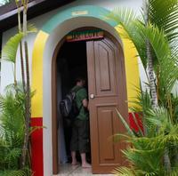 Jamaica Combo Tour: Dunn's River Falls and Bob Marley's Nine Mile