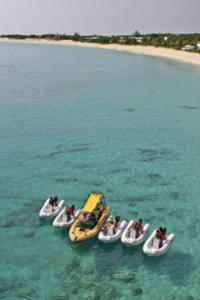 Rock 'n Roll Snorkel and Sightseeing Safari of St. Martin