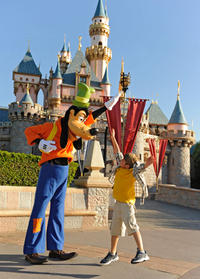 5-Day Disneyland Resort Ticket