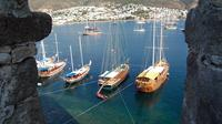 Bodrum Castle Underwater Archeology Museum with Private Guide and Van