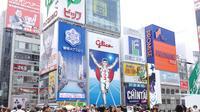 Half-Day Osaka 4-Hour Off-The-Beaten Track Walking Tour