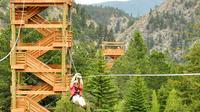 Idaho Springs Zip Line Tour