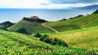 Cantabrian Coast Wine Tour from San Sebastian