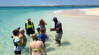 Grand Turk Supreme Snorkeling Tour