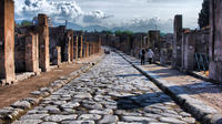 Private Tour to Pompei, Herculaneum and Vesuvius