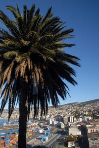 Private Tour: Isla Negra Plus Algarrobo, Tunquen and Quintay with Lunch