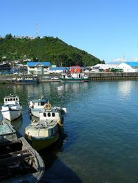 Puerto Montt Shore Excursion: Puerto Montt and Puerto Varas City Tours