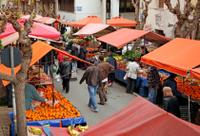 Santiago Like a Local: Private Walking Tour with Coffee, Markets, Street Food and San Cristobal Hill