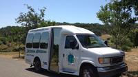 Muir Woods and Sausalito Half Day Tour