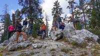 Sierra Nevada Tour of Yosemite and Tahoe