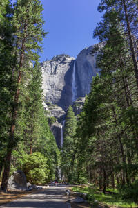 Small-Group Yosemite Tour from San Francisco
