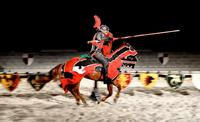 Medieval Times Dinner And Tournament With Transport