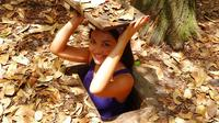 Cu Chi Tunnels Tour from Phu My Port