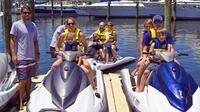 Orange Beach Waverunner Dolphin Tour