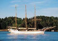 Oslo Shore Excursion: Oslo Fjord Sightseeing Cruise