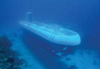 Atlantis Submarine*