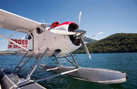 Gourmet Lunch at Jonah's by Seaplane from Sydney