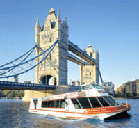Thames River Sightseeing Cruise and London Eye