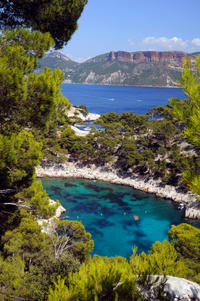 Provence Sightseeing Tour: Marseille and Cassis Calanques Cruise