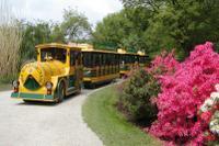 Vienna Schönbrunner Gardens Mini-Train Tour
