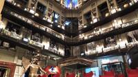 Turin Cinema Museum Guided Tour