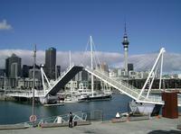 Auckland Shore Excursion: Small-Group Auckland City Tour*