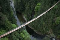 Capilano Suspension Bridge Admission