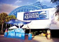 The Florida Aquarium in Tampa Bay*