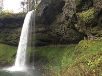 Small Group Willamette Valley Wine and Waterfalls Tour