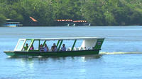 Day Trip to Tortuguero National Park from San Jose