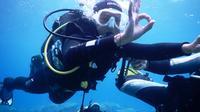 PADI Half Day Scuba Diving Course in Fuerteventura
