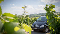 Small-Group Half-Day Alsace Wines Tour from Strasbourg