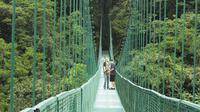 Selvatura Park Canopy Tour from Monteverde