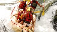 Tenorio River Whitewater Rafting Class III-IV