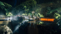Furnas Evening Thermal Bath Small Group Tour with Dinner