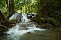 Full-day Krabi Hot Stream and Rainforest Tour
