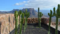 Guided Day Tour on Gran Canaria with Lunch