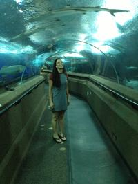 Singapore Sentosa Island Afternoon Trip