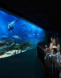 Singapore Super Saver: Universal Studios, S.E.A. Aquarium and Maritime Experiential Museum Admission with Optional Hotel Pickup