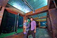 Langkawi Underwater World and Crocodile Farm Tour