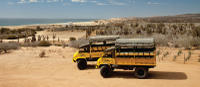 Baja Ranch Tour and Camel Safari from Los Cabos